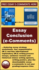 Response Comments for Essay Conclusions