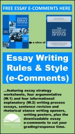 e-Comments for Essay Writing Rules and Style