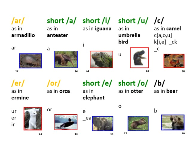 Short Vowels Animal Sound-Spelling Cards