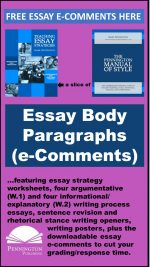 E-Comments for Essay Body Paragraphs