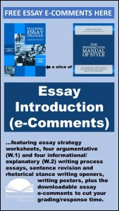 Downloadable Essay Comments