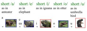 Short Vowels Sound-Spellings