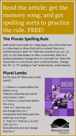 Plural Noun Forms