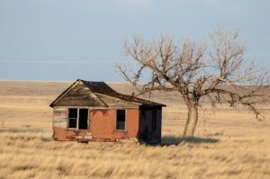 Students are like fixer-upper houses.