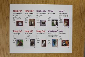 43 Animal Sound-Spelling Cards